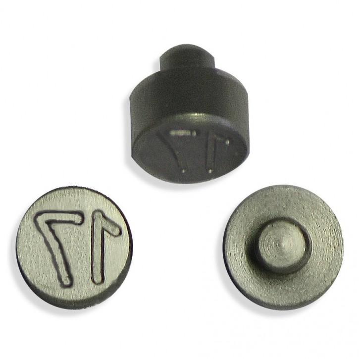 Plombenzangeneinsatz Edelstahl 10 mm Gravur Jahr 17