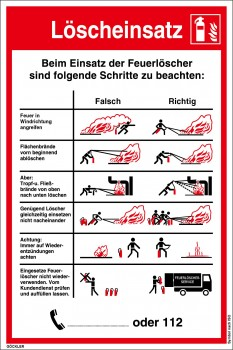 Löscheinsatz Falsch/Richtig-Schild, Gr.: 210 x 300 mm, Kunststoffplatte mit selbstklebender Schaumschicht, Symbol nach ISO 7010